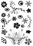 цветки элемента Стоковое Фото