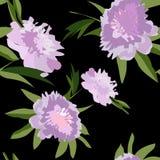 цветки элементов визитной карточки предпосылок флористические установили вектор Стоковые Изображения RF