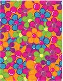 цветки ягод безшовные Стоковое Фото