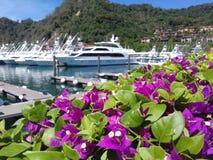 Цветки, яхта и пляж Стоковая Фотография RF