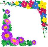 Цветки для рамок украшения Стоковая Фотография RF
