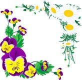 Цветки для рамок украшения Стоковые Фото
