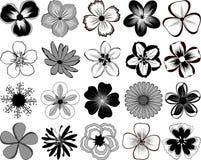 цветки стоковые изображения rf