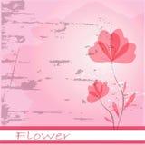 Цветки Стоковая Фотография