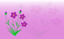 цветки Стоковые Фотографии RF