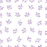 Цветки 1 Стоковое Изображение