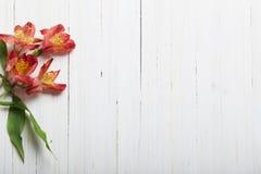Цветки Alstroemeria на деревянном backgrond Стоковые Изображения RF