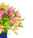 Цветки alstroemeria Bouquetof стоковая фотография