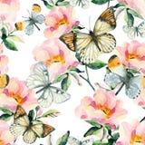 Цветки briar акварели и картина бабочки безшовная Ветви Розы собаки в винтажном стиле Стоковые Фотографии RF