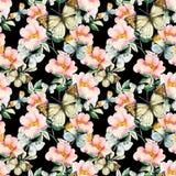 Цветки briar акварели и картина бабочки безшовная Ветви Розы собаки в винтажном стиле Стоковая Фотография