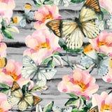 Цветки briar акварели и картина бабочки безшовная Ветви Розы собаки в винтажном стиле Стоковые Изображения