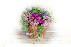 Цветки Burevestnik красивые в корзине Стоковая Фотография