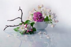 Цветки Burevestnik красивые в корзине Стоковые Фото