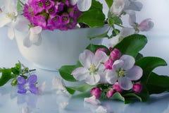 Цветки Burevestnik красивые в корзине Стоковая Фотография RF