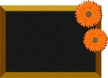 цветки chalkboard пустые Стоковое Изображение RF