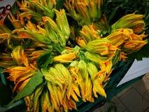 Цветки Courgette Стоковое фото RF