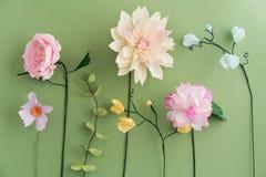 Цветки Crepe бумажные стоковое изображение