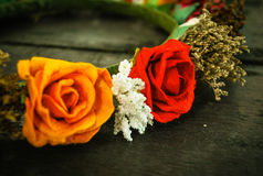 Цветки Diadem Стоковая Фотография