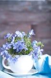 Цветки Forgetmenot Стоковое фото RF