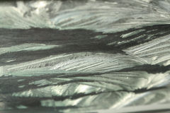 Цветки Frost Стоковые Фото