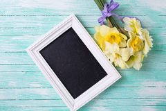 Цветки Narcissus и пустое классн классный на бирюзе покрасили wo Стоковая Фотография RF