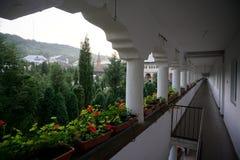 Цветки Oradea монастыря на балконе стоковые фотографии rf