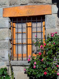 Цветки Windows Стоковые Изображения