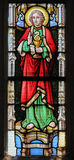 Цветное стекло - St. John евангелист стоковое фото rf