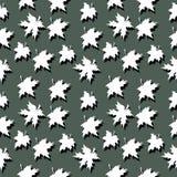 9 цветов осени Стоковое Изображение RF