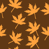 9 цветов осени Бесплатная Иллюстрация