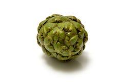 цветок артишока свежий Стоковая Фотография