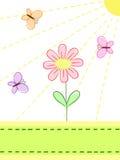 цветок бабочек Стоковое Изображение RF