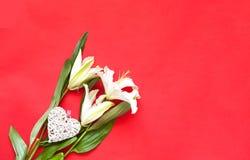 Цветок белой лилии с декоративными сердцами на предпосылке коралла декор праздничный стоковые изображения