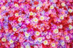 Цветок, букет, поднял - цветок, покрашенный завод, Multi Стоковые Фото