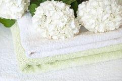 цветок ванны Стоковые Фото