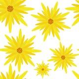 Цветок вектора картины безшовный Стоковая Фотография RF