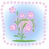 Цветок весны Стоковое Изображение RF