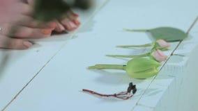 Цветок выставки флориста сток-видео