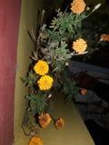 Цветок выходит индийская культура Индия стоковое изображение