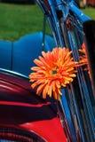 Цветок в автомобиле стоковая фотография rf