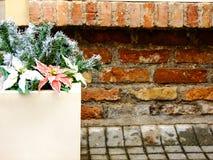 Цветок в вазе снаружи Стоковое Фото