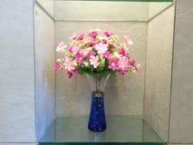 Цветок в коробке Стоковые Изображения RF