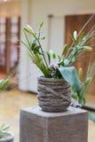 Цветок в лобби Стоковые Изображения RF