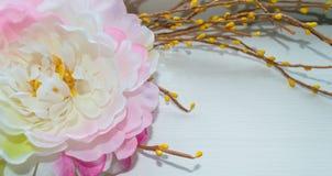 Цветок в цветени Стоковое Изображение RF