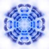 цветок геометрический Стоковые Изображения RF