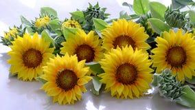 Цветок глины, букет солнцецвета Стоковые Изображения RF
