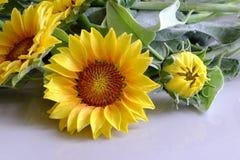 Цветок глины, букет солнцецвета Стоковое Фото