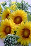 Цветок глины, букет солнцецвета Стоковые Изображения