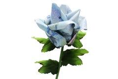 Цветок дег Стоковые Фотографии RF