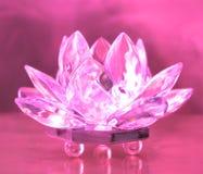цветок диаманта Стоковое Фото